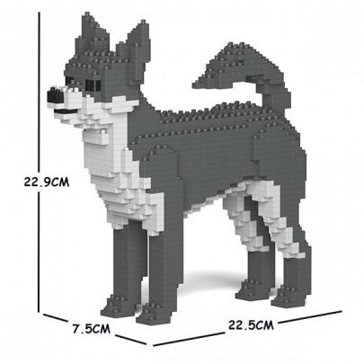 ST19PT21-M04 Chihuahua 01S M04_size-405x