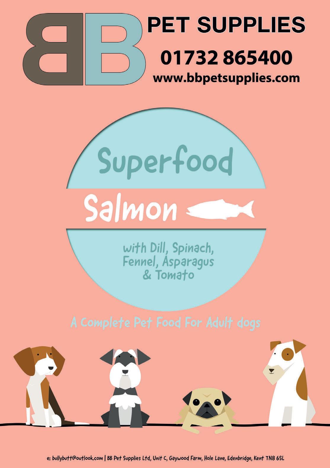 BHE-Superfood-Salmon.jpg