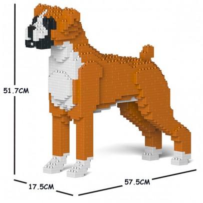 boxer01cm2_d-405x405.jpg