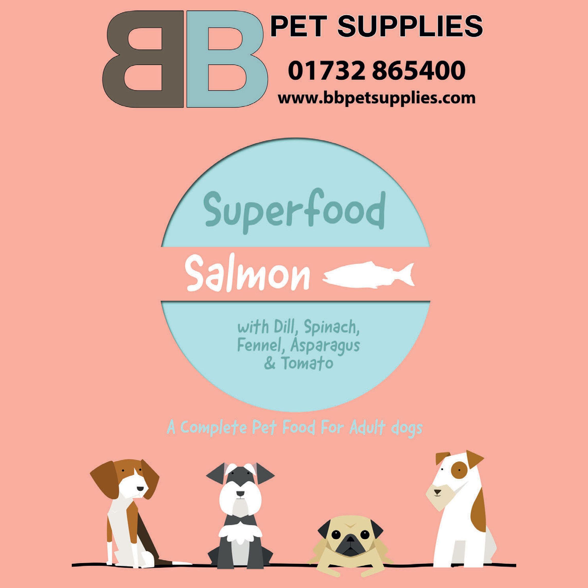 BHE-Superfood-Salmon-web.jpg