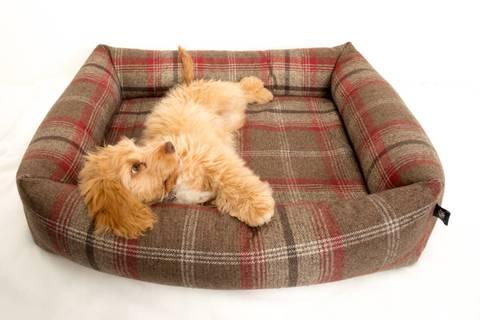 Pet_luxury_avondale_dog_bed_chunky_squar