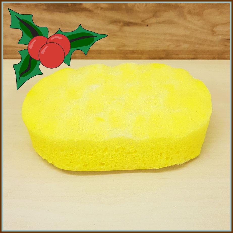 Pineapple-Soap-Sponge.jpg